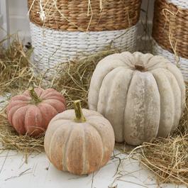 Kürbis 3er Set Pumpkin