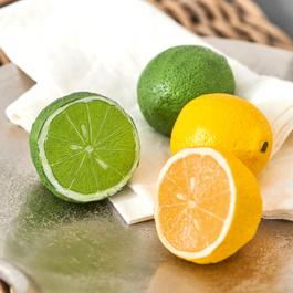 Deko-Zitrusfrucht 4er Set Citrona